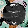 Funk Station (Original Mix)