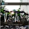 Hallucinating You (Simos Tagias Remix)