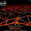 Mosaic (Alt-A Remix)
