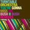 You're Gonna Miss Me (Bush II Bush Remixes - The Simple Bass Edit)