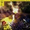 Wizard of Oz (Joshua Collins Alpha Mix)