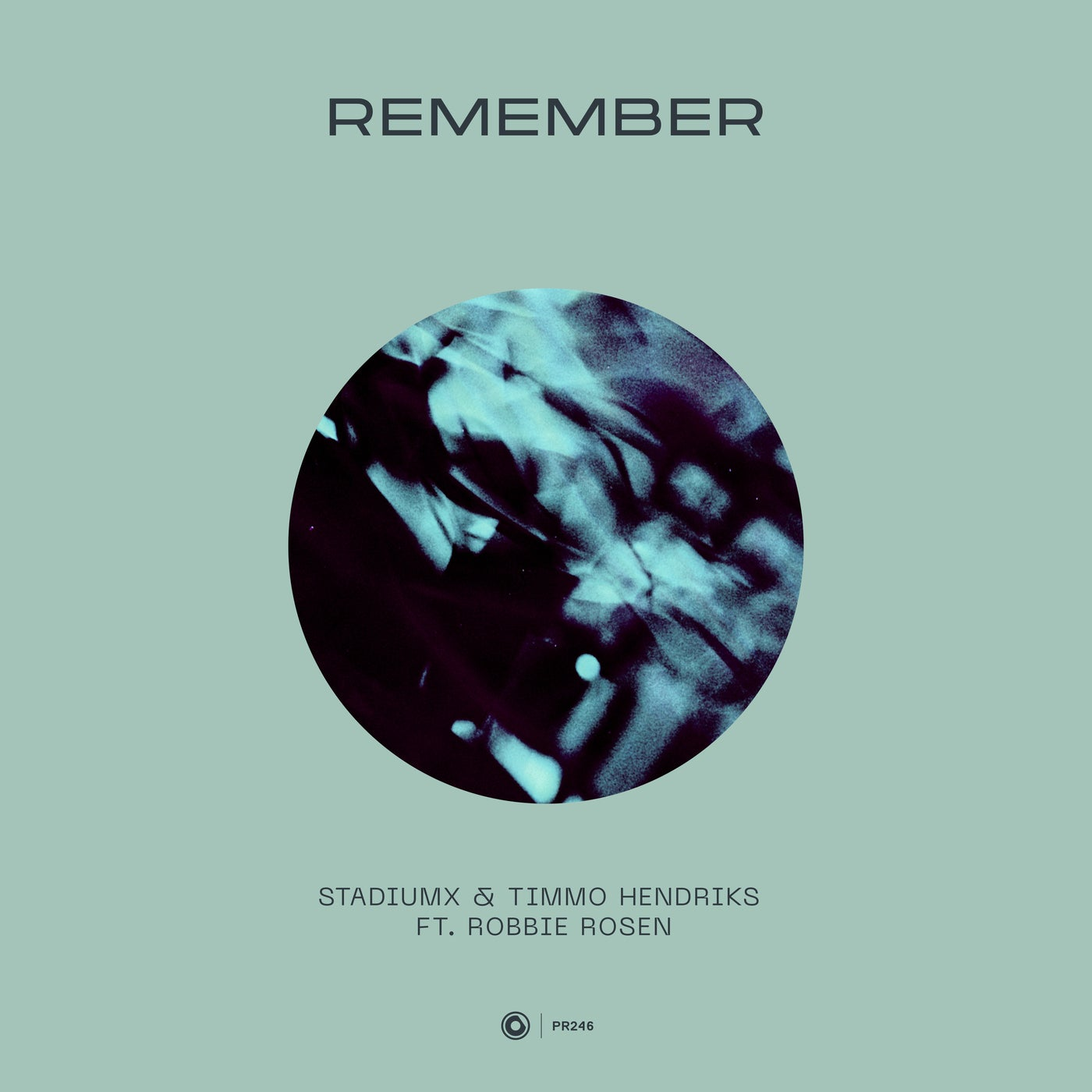 Remember feat. Robbie Rosen (Extended Mix)