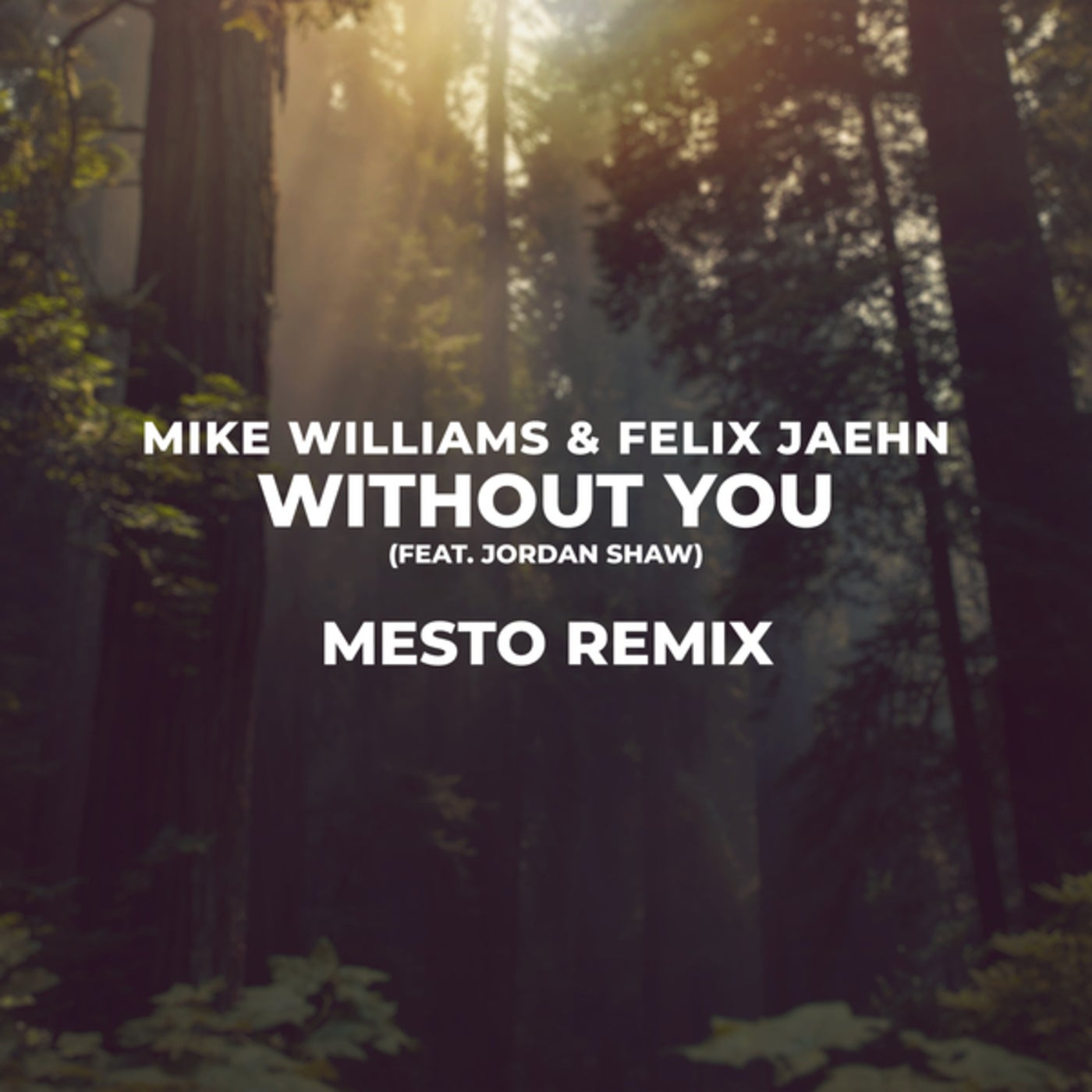 Without You (Mesto Extended Remix)