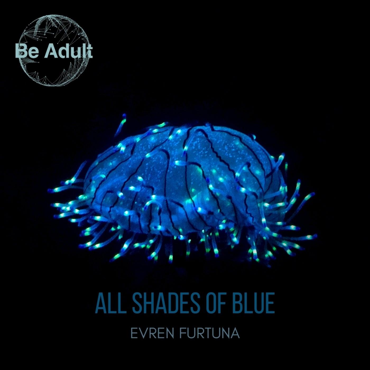 All Shades of Blue (Original Mix)