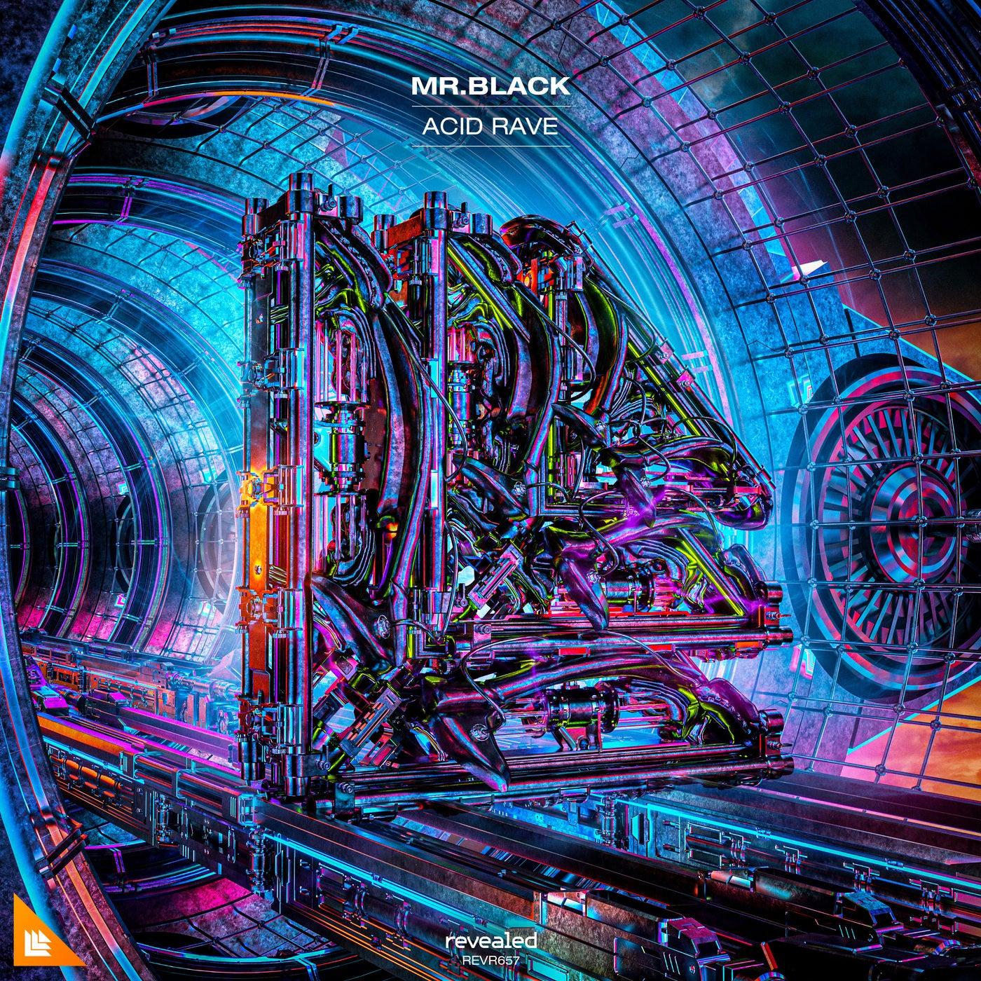 Acid Rave (Extended Mix)