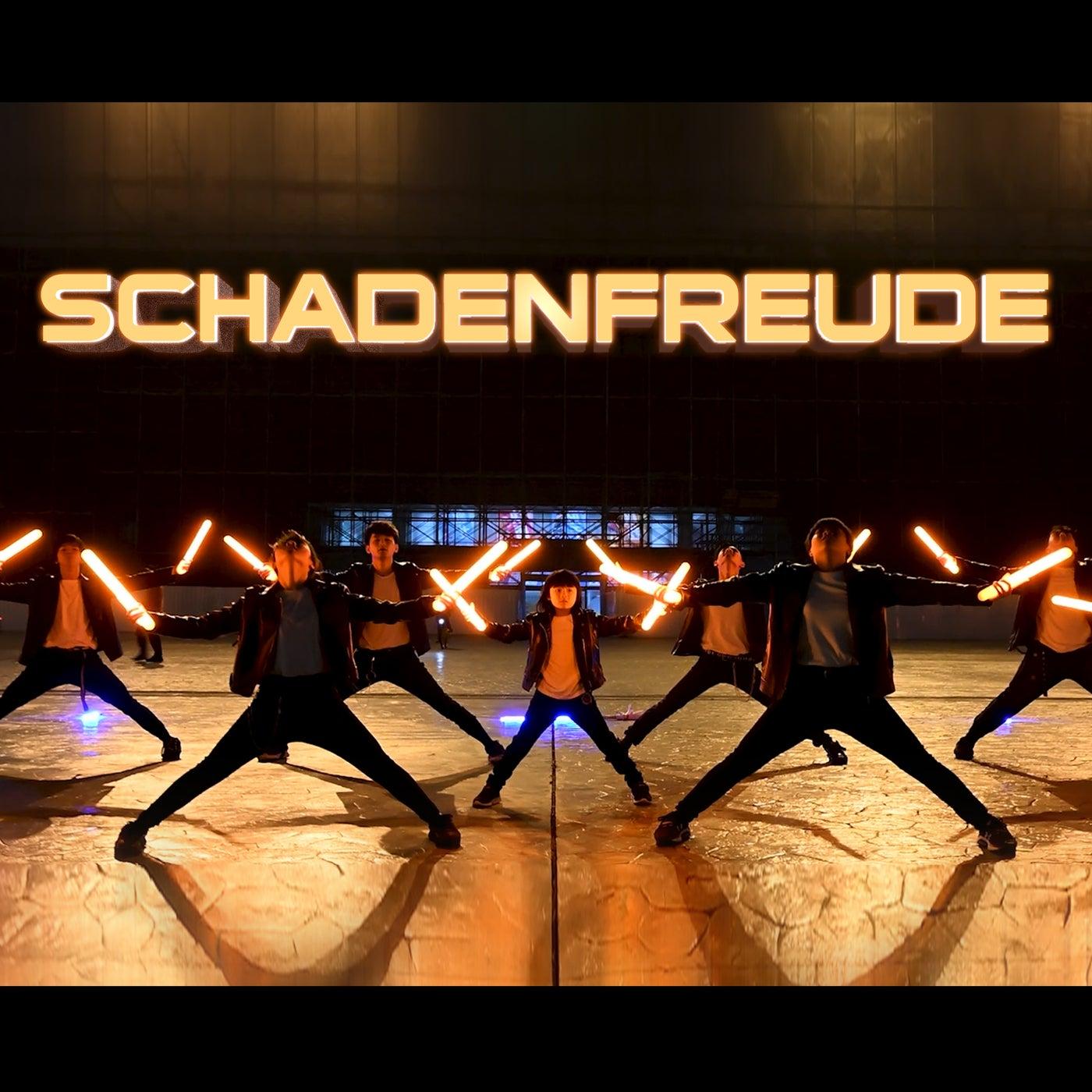 Schadenfreude (DJ Edit)