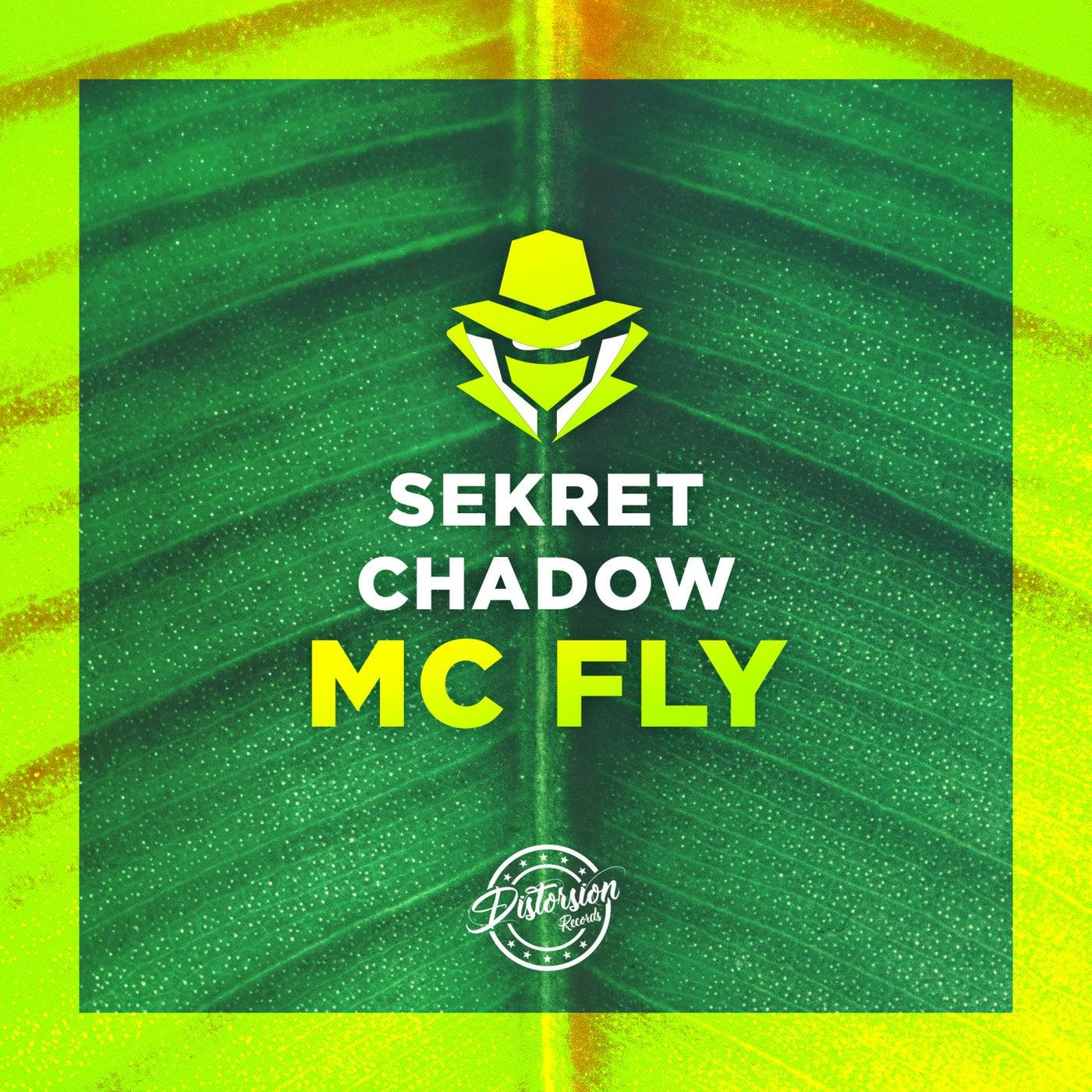 Mc Fly (Original Mix)