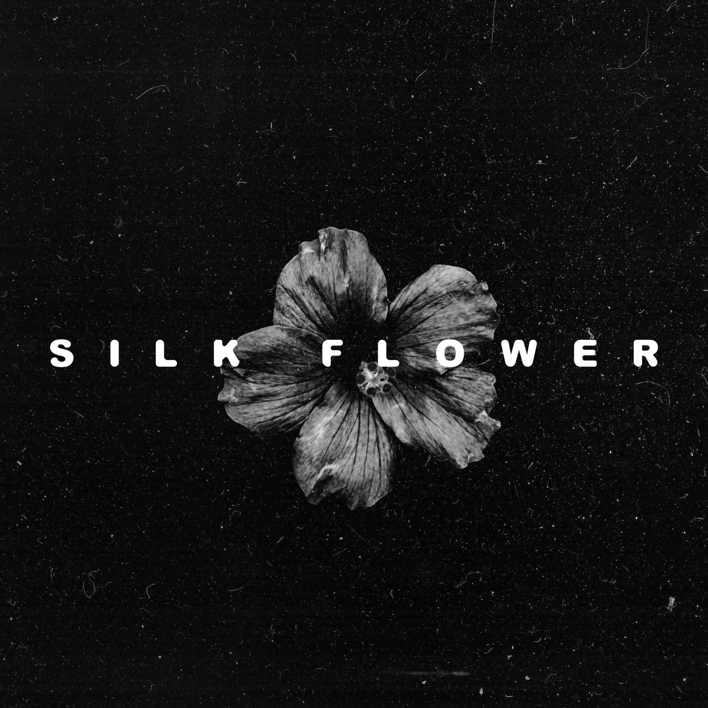 Silk Flower feat. Sascha Naomi (Original Mix)