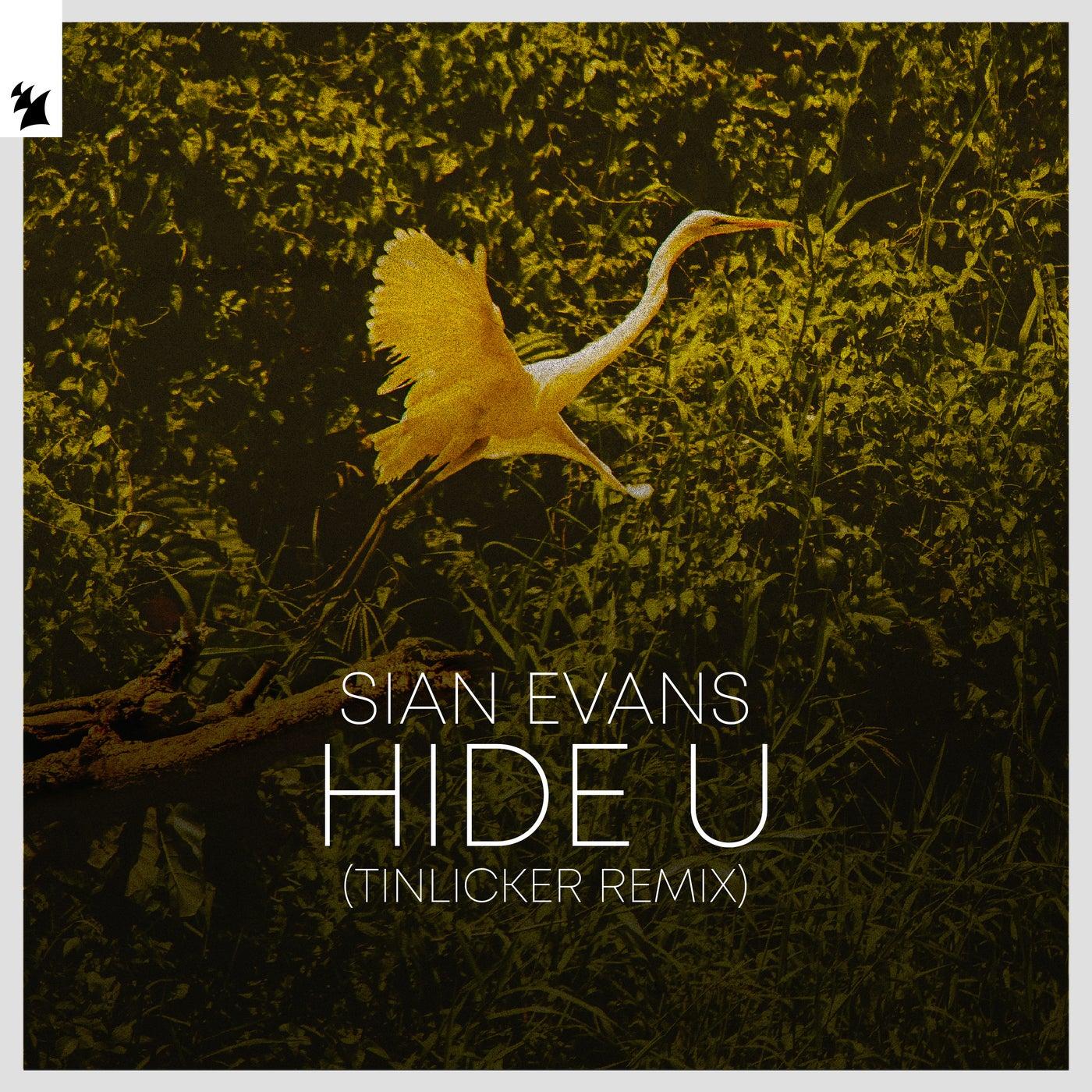 Hide U (Tinlicker Extended Remix)