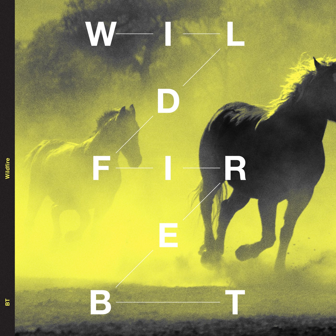 Wildfire (Sean Tyas Extended Remix)