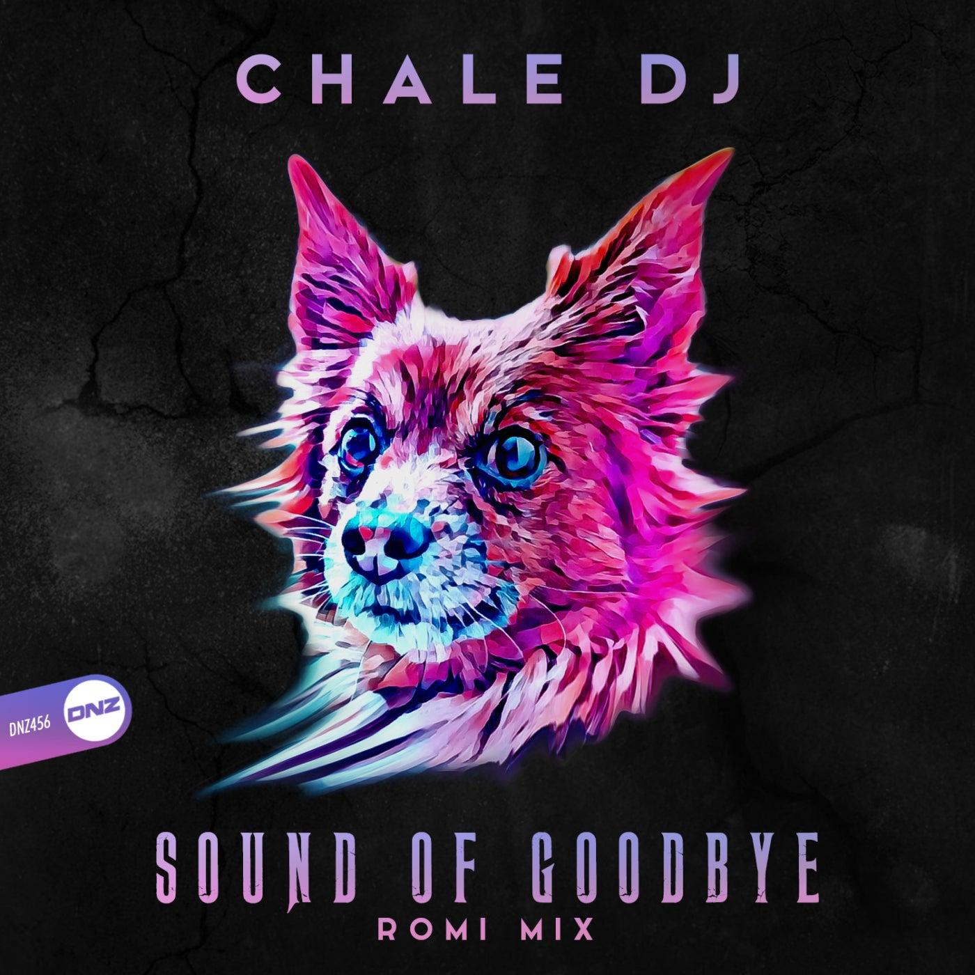 Sound Of Goodbye (Romi Mix)