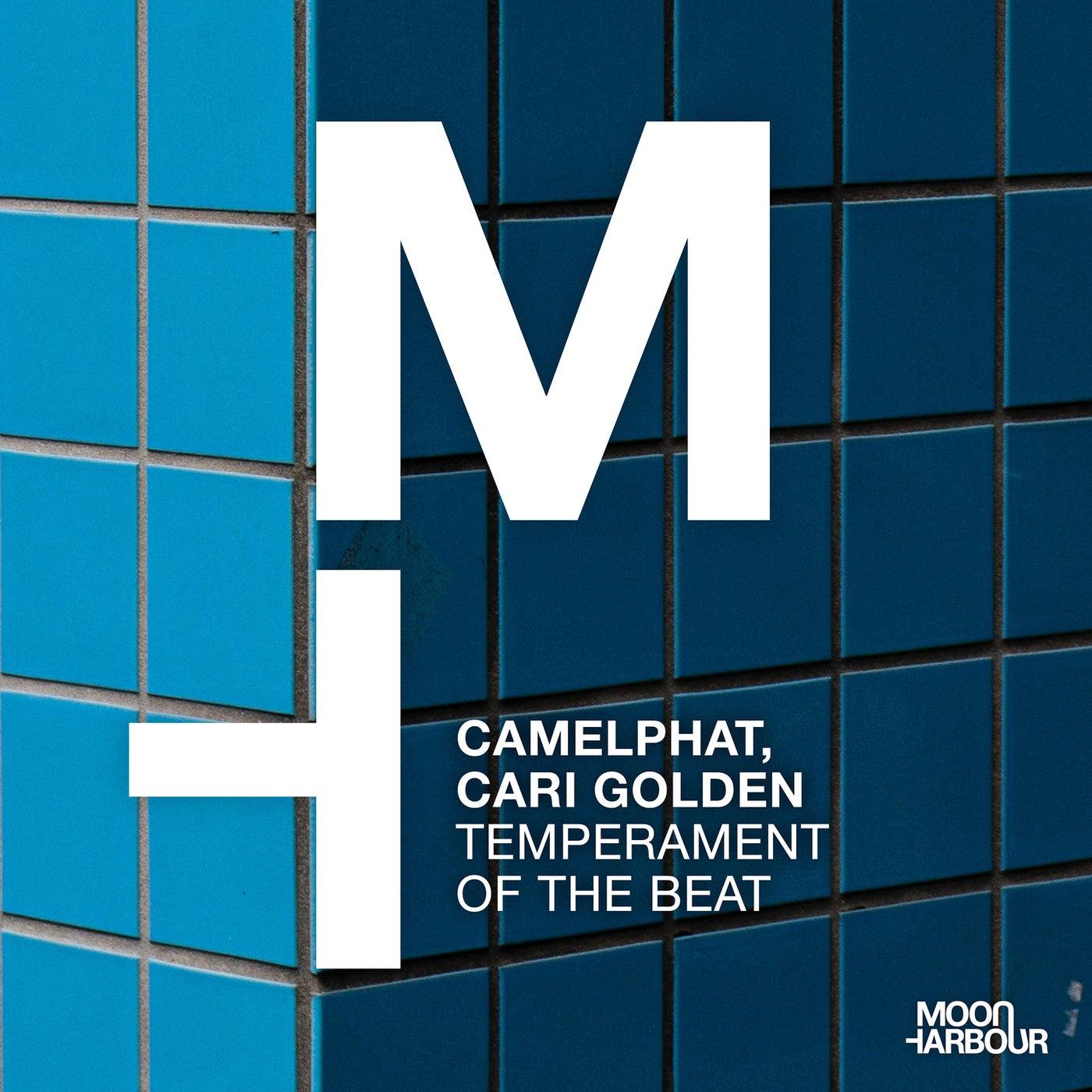 Temperament of the Beat (Original Mix)