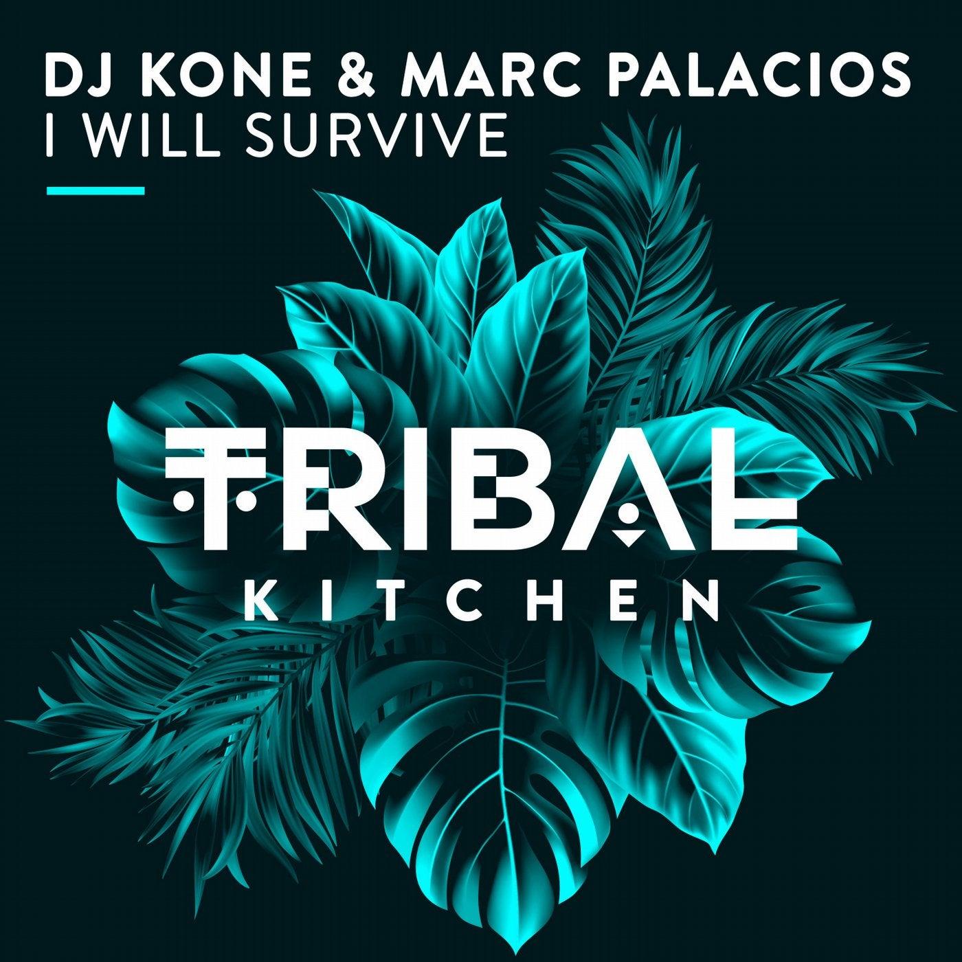 I Will Survive (Original Mix)