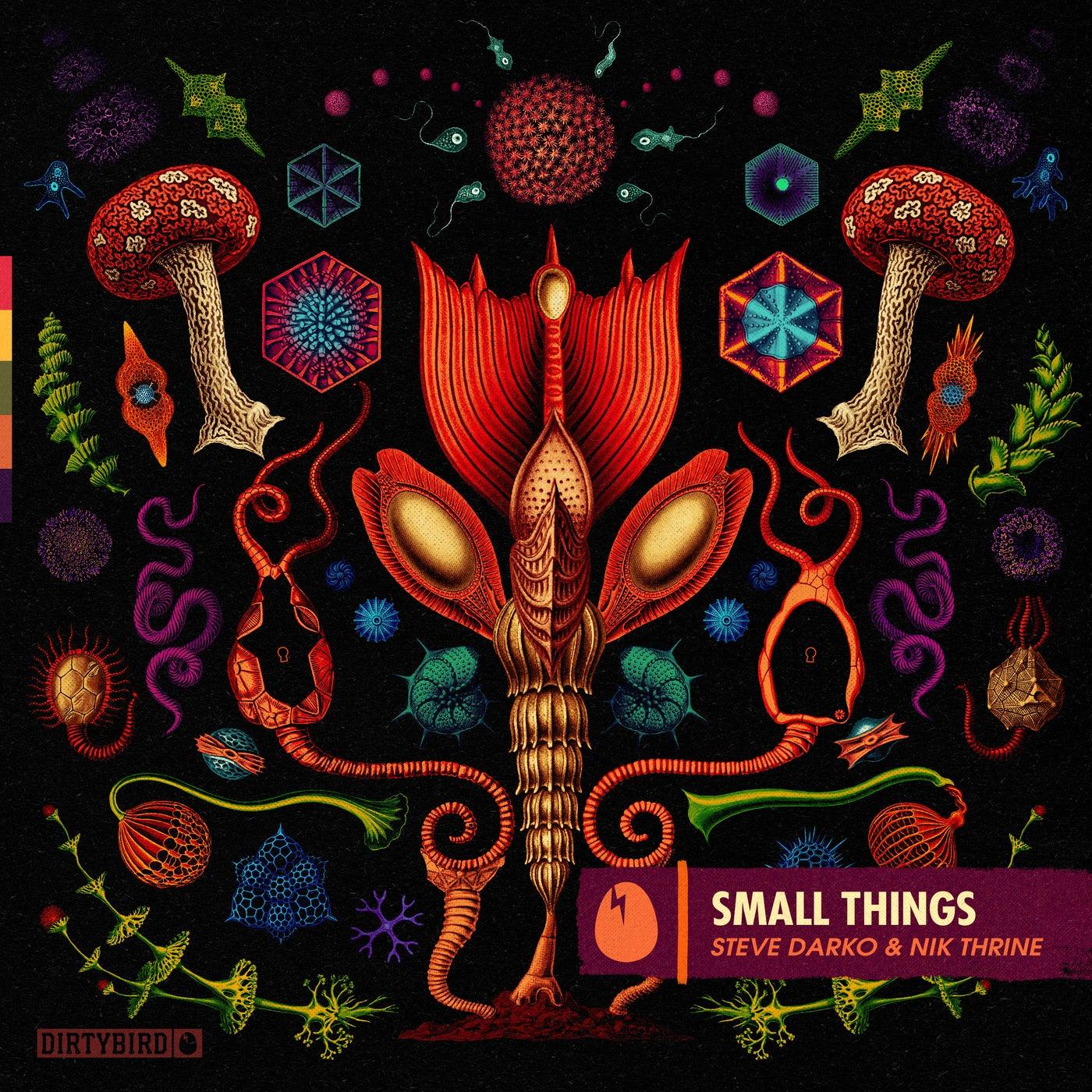Small Things (Original Mix)