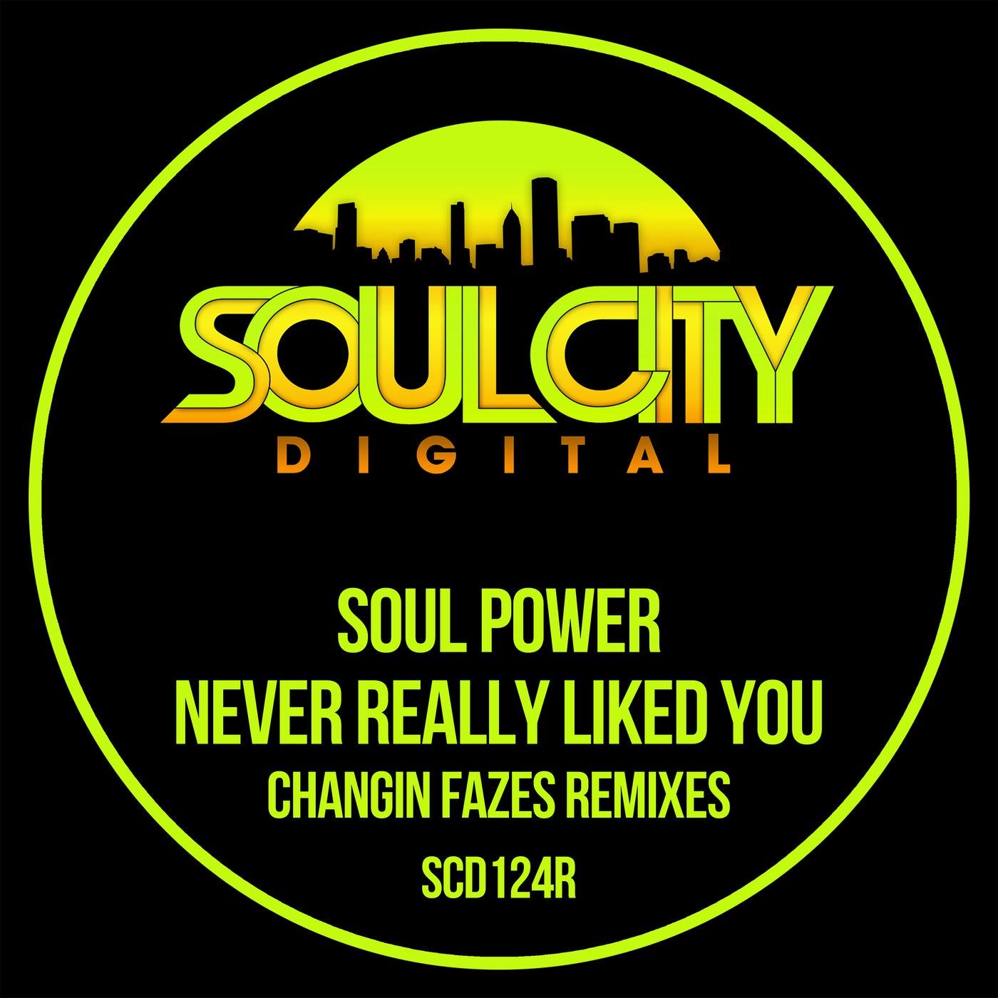 Never Really Liked You (Changin Fazes UK Garage Remix)
