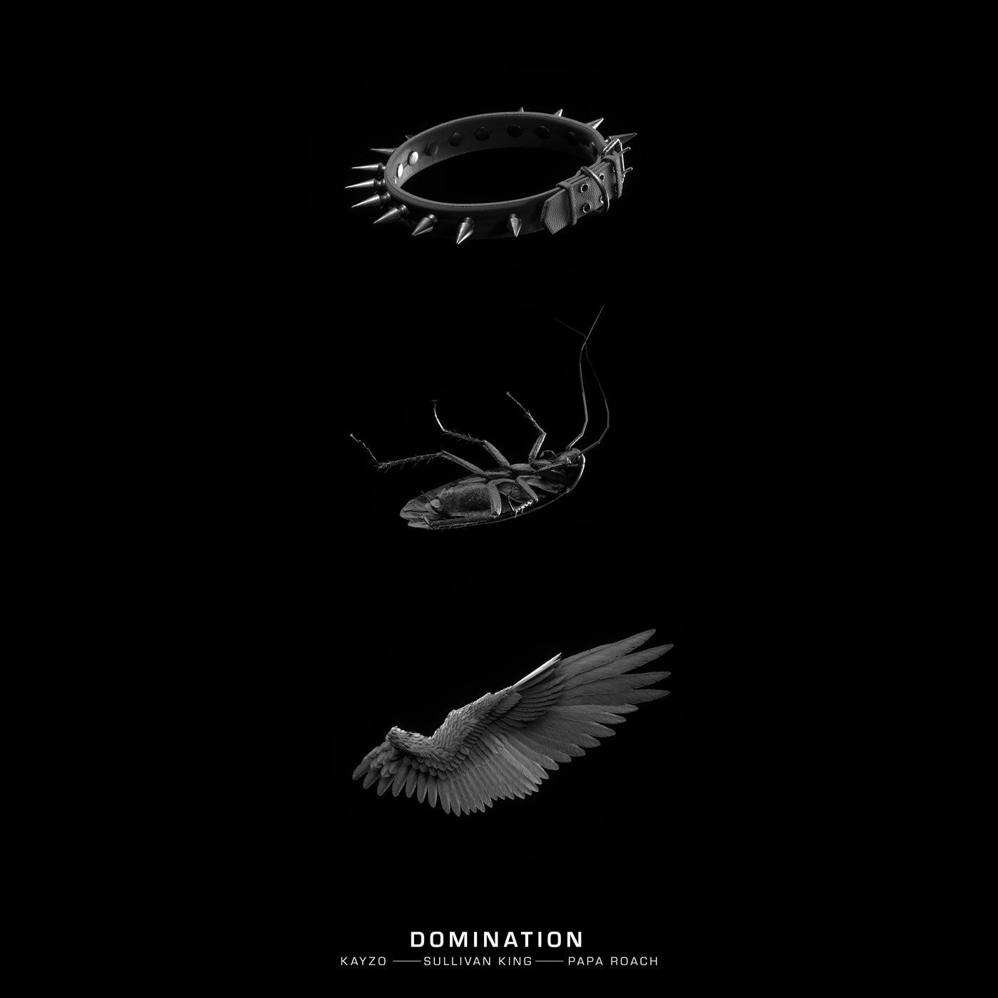 DOMINATION (Original Mix)