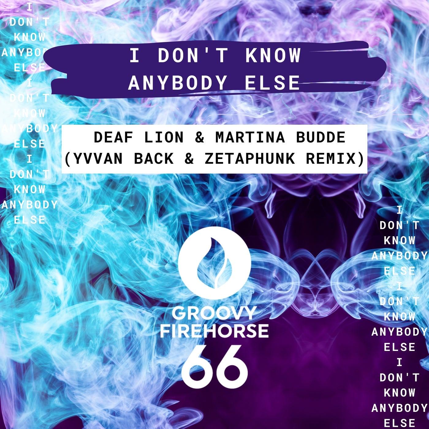 I Don't Know Anybody Else (Yvvan Back & ZetaPhunk Remix)