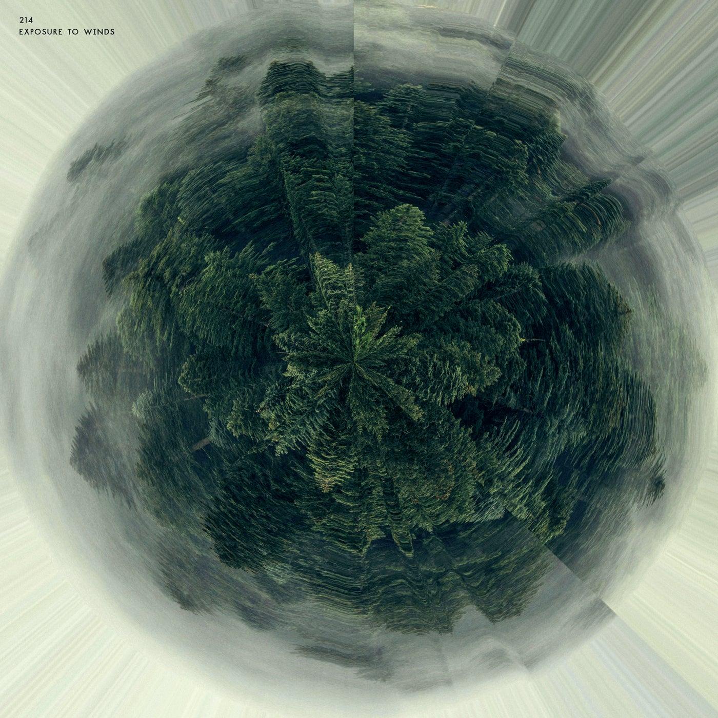 Ball of Straw (Original Mix)
