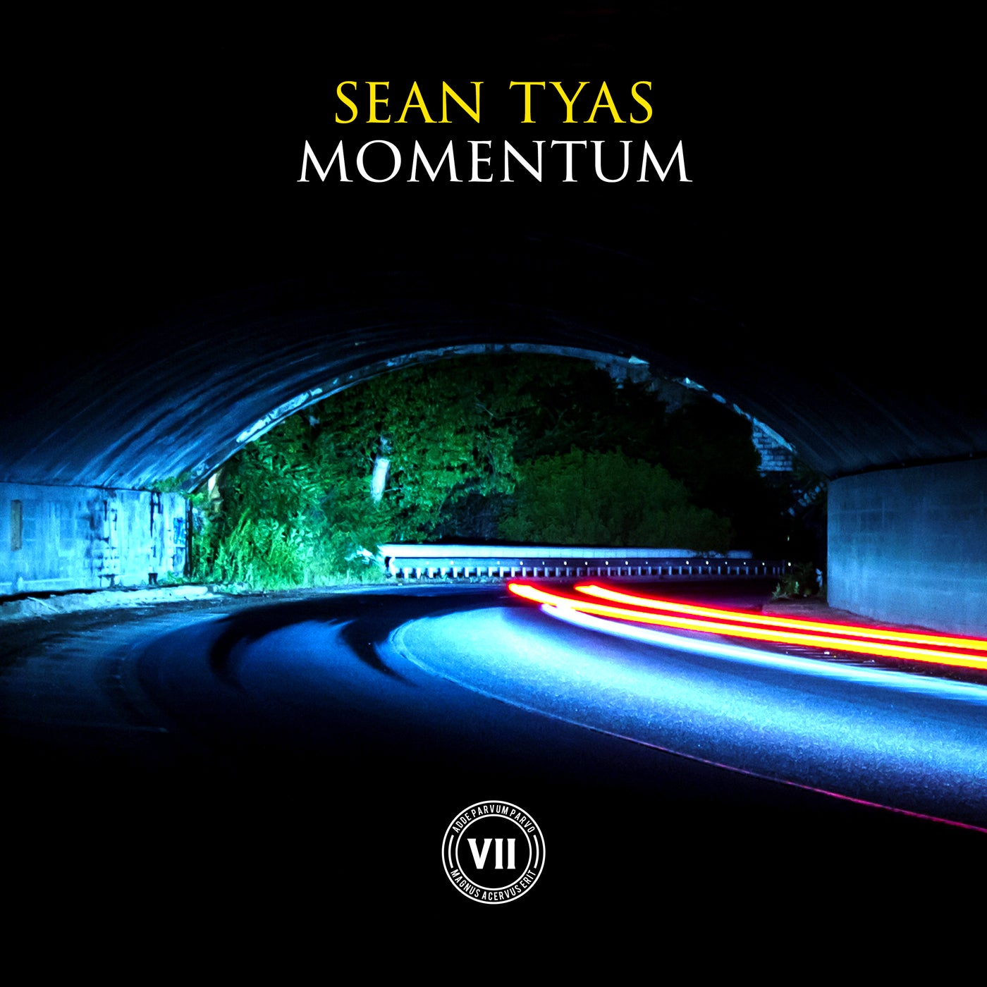 Momentum (Extended Mix)