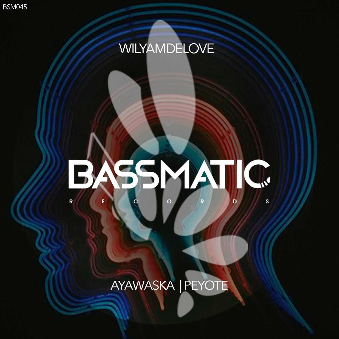 Ayawaska (Original Mix)