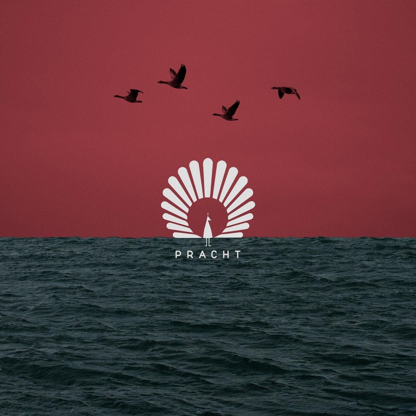 Packard (Nora En Pure Extended Remix)