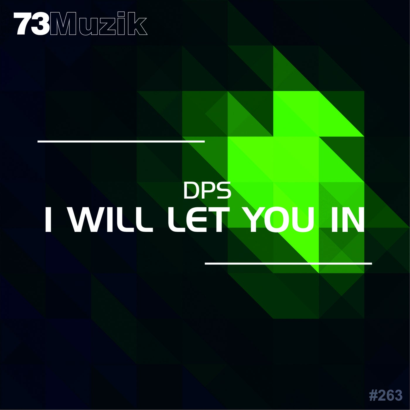 I Will Let You In (Original Mix)