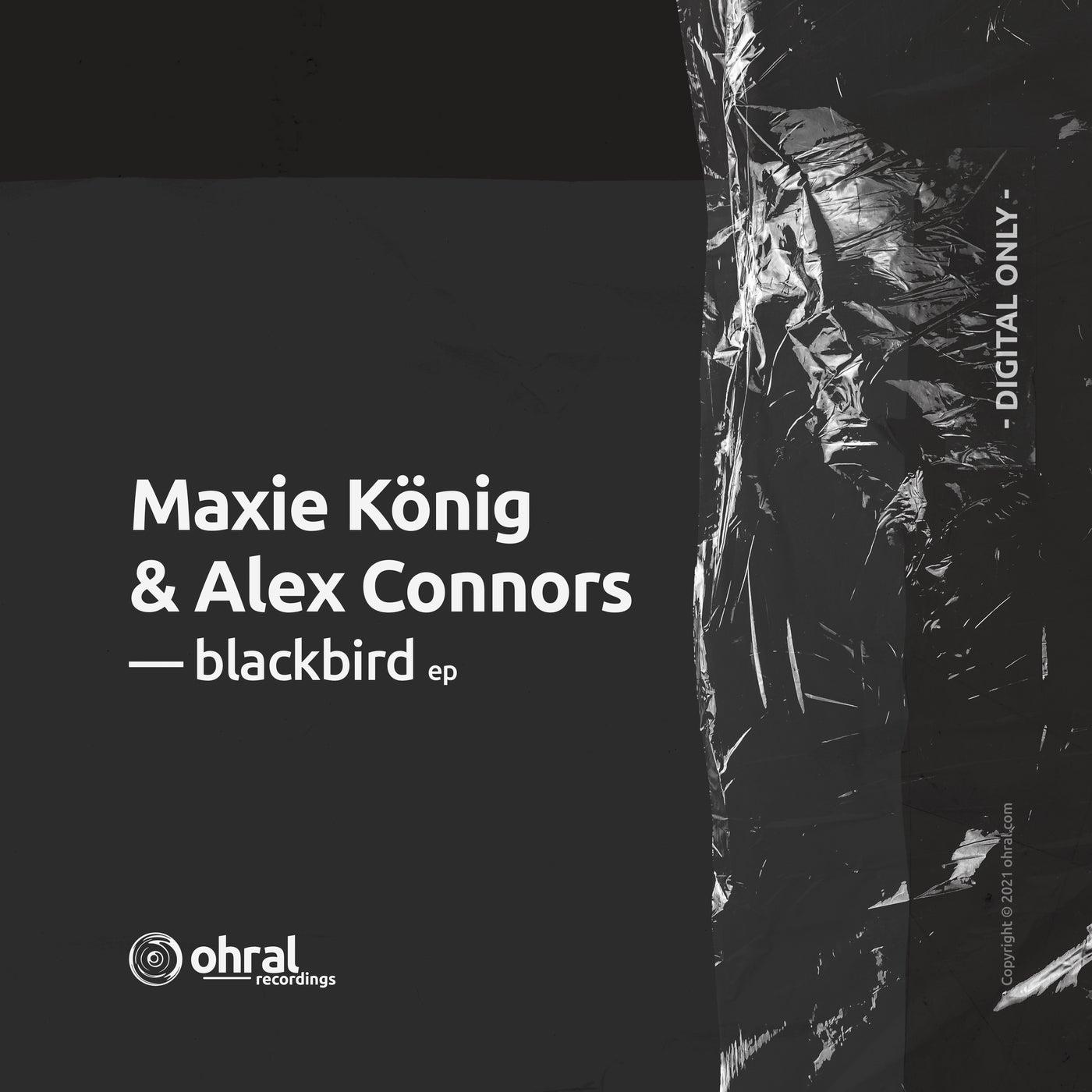 Blackbird (Ohral Extended Dub)