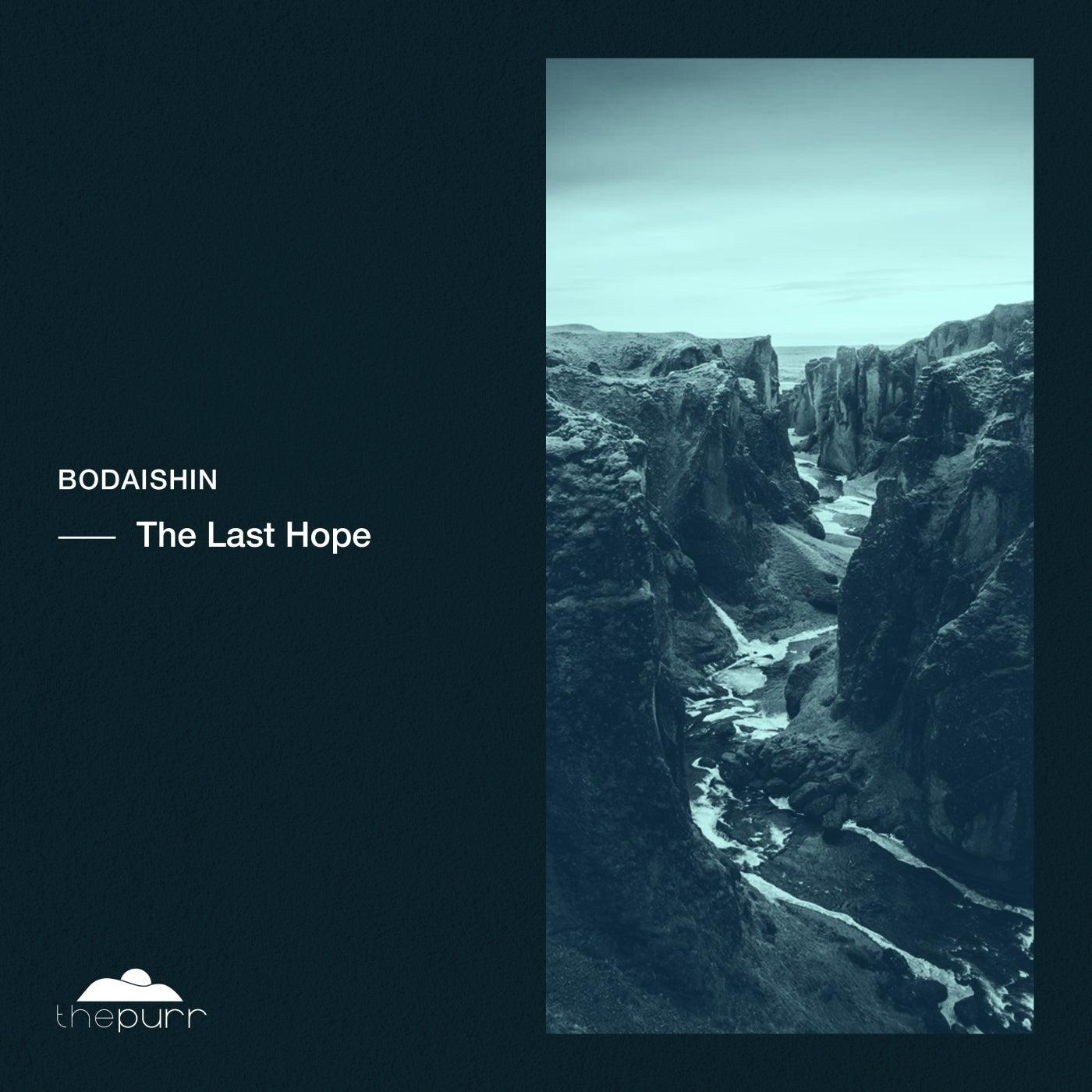 The Last Hope (Original Mix)