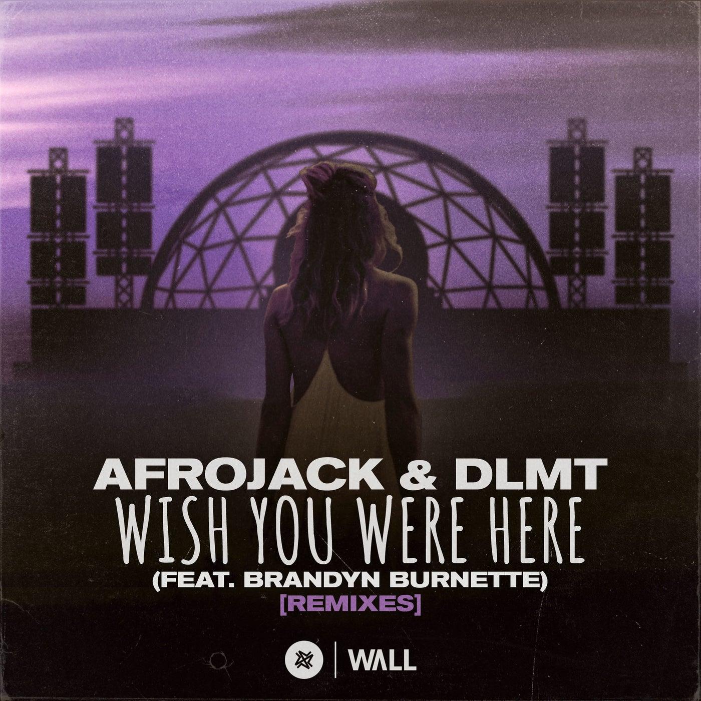 Wish You Were Here (feat. Brandyn Burnette) (Dave Summit & CastNowski Extended Remix)