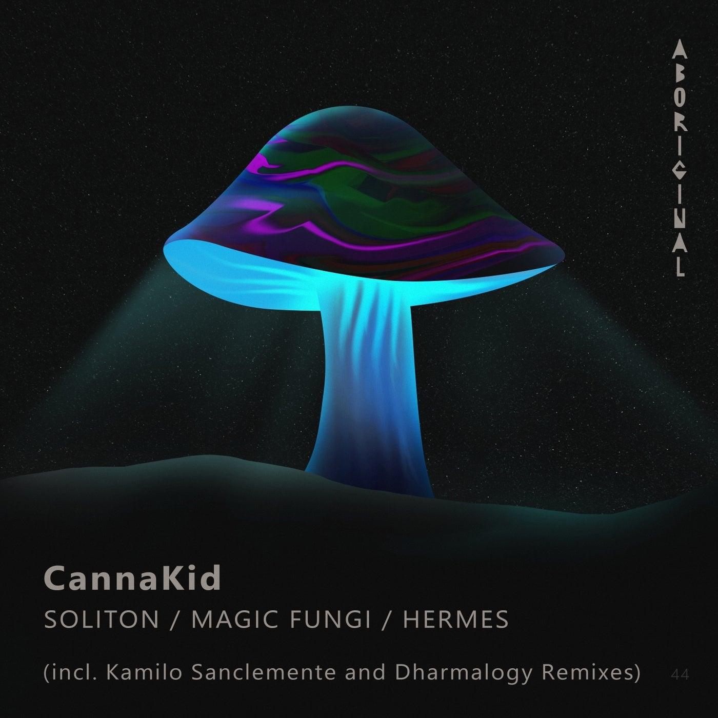 Magic Fungi (Original Mix)