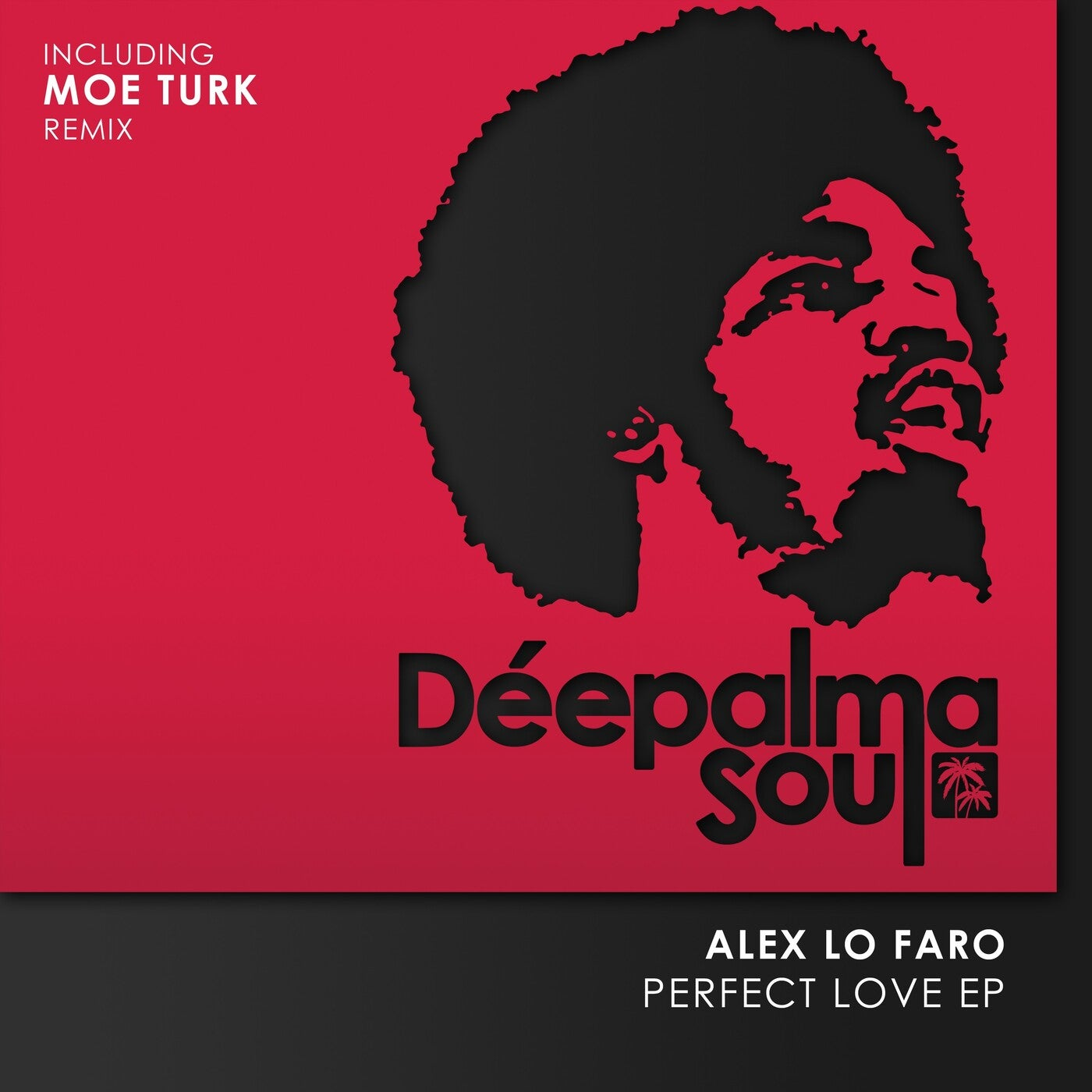 Perfect Love (Extended Mix)