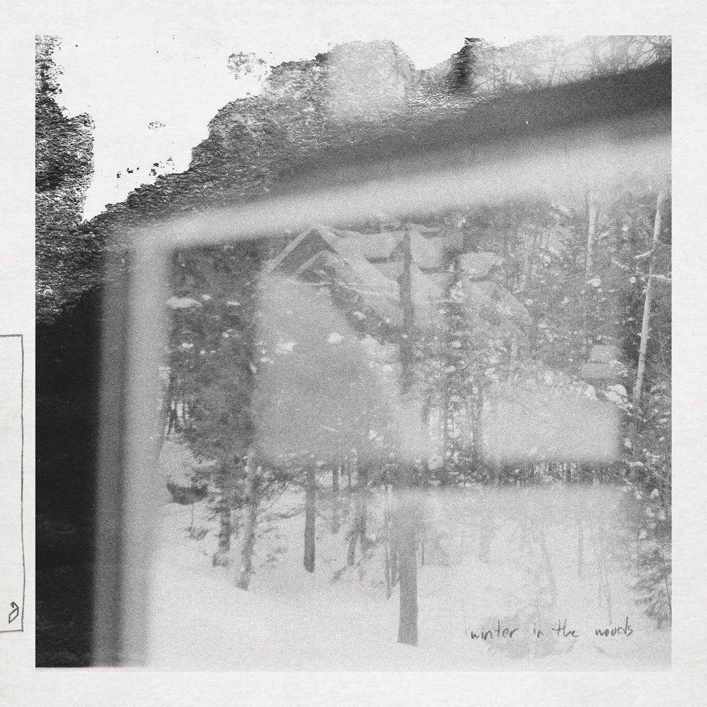 Winter In The Woods (Original Mix)