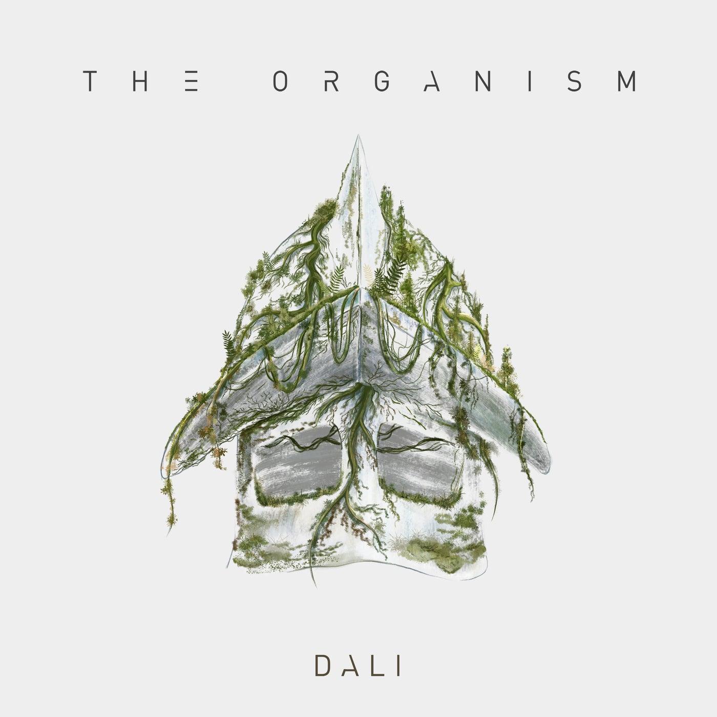 Dali (Original Mix)