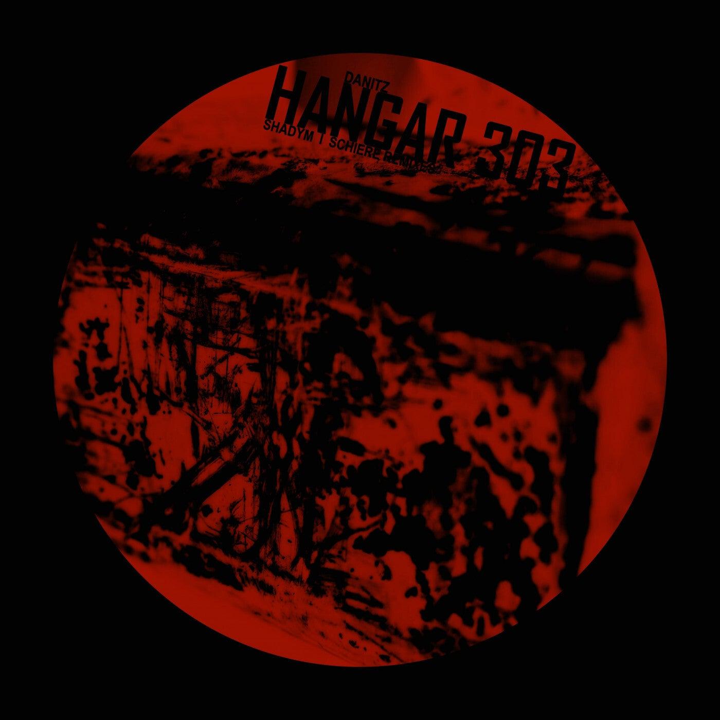 Hangar 303 (Shadym Remix)