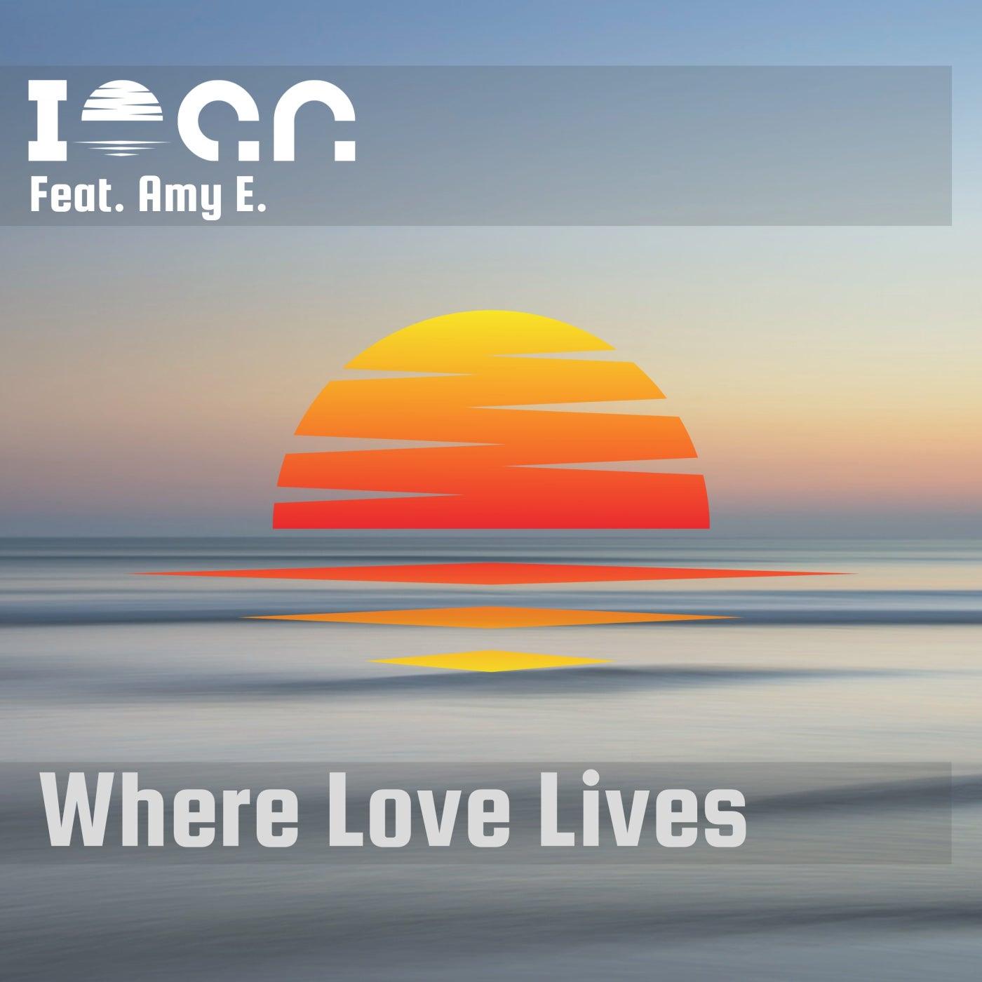 Where Love Lives feat. Amy E. (Original Mix)