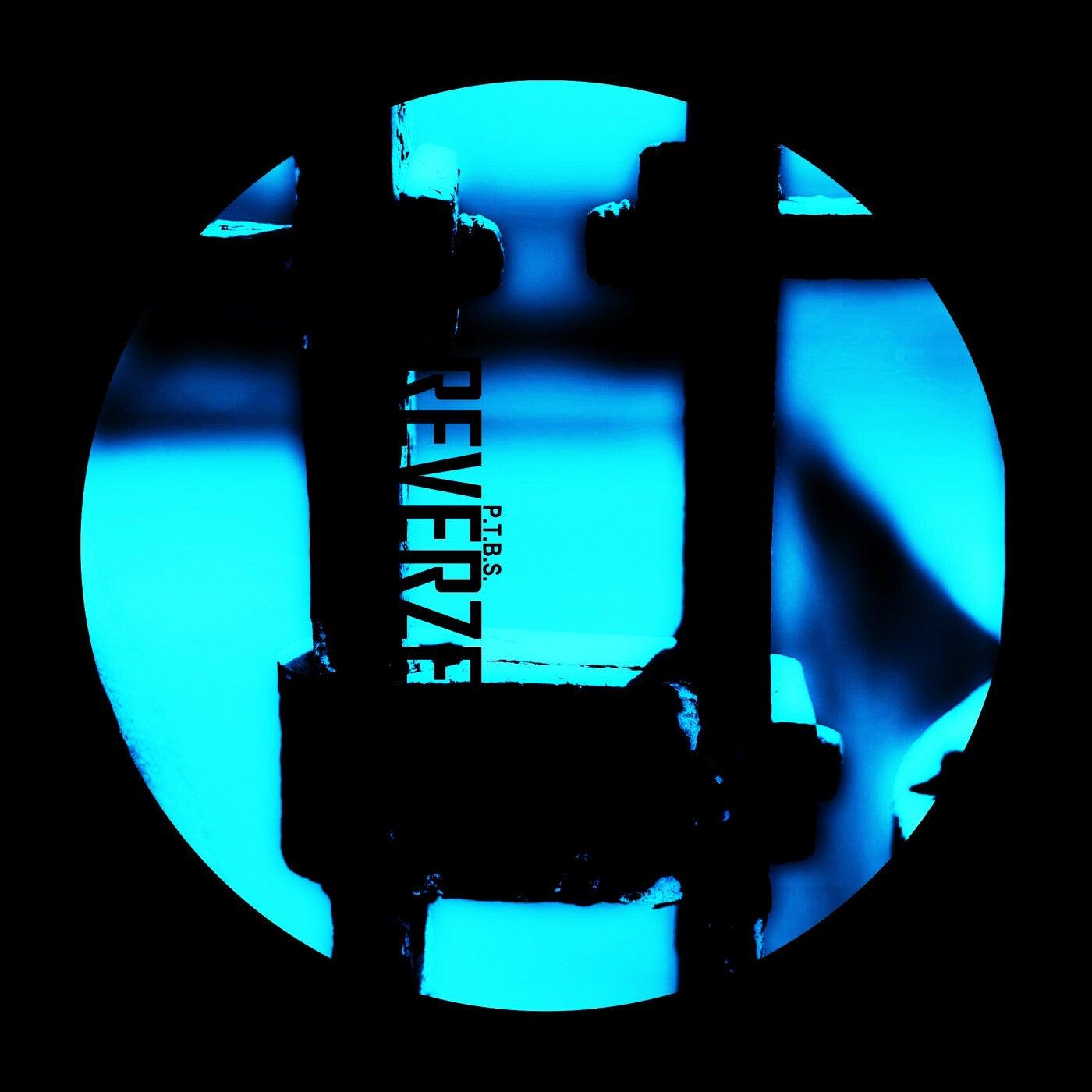 Rhythm Of The Beat (Danitz Remix)