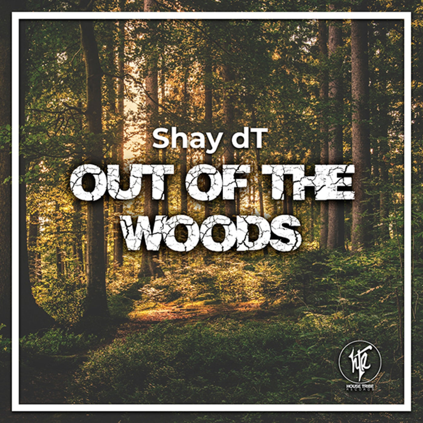Out Of The Woods (Original Mix)