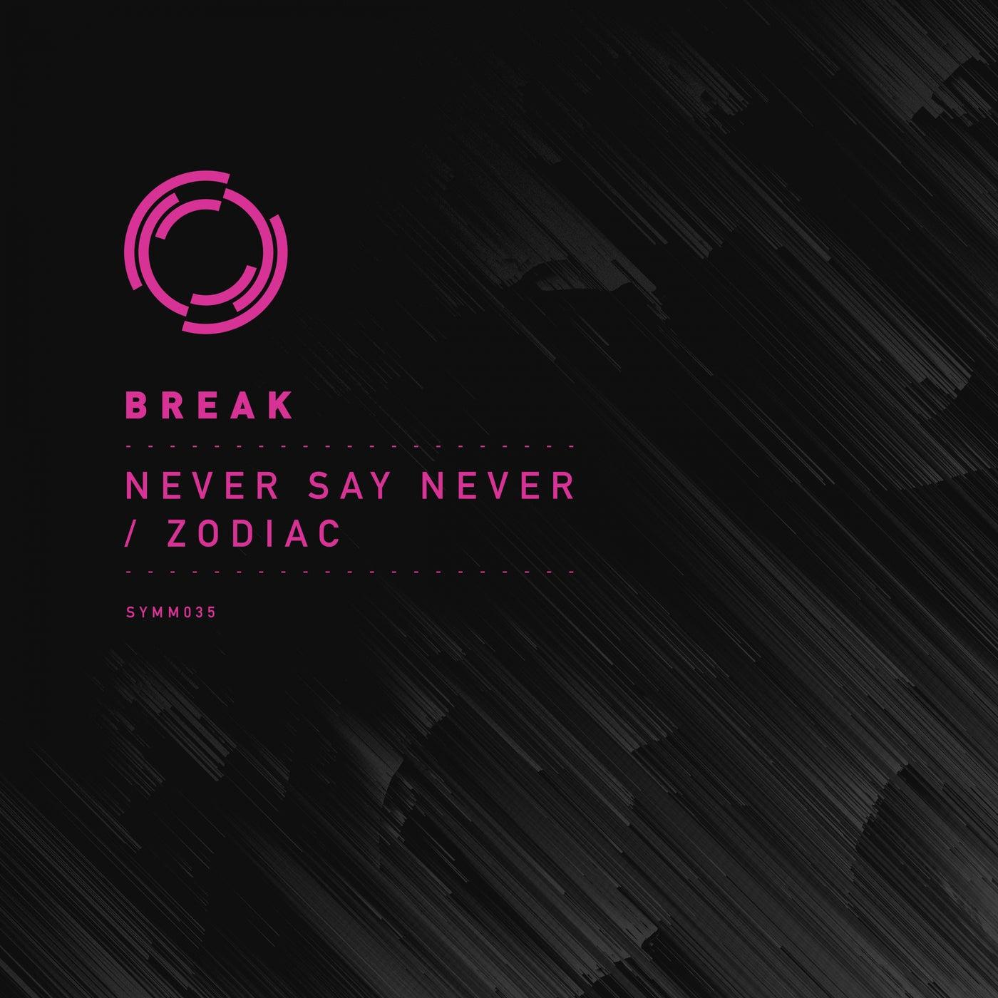 Never Say Never (Original Mix)