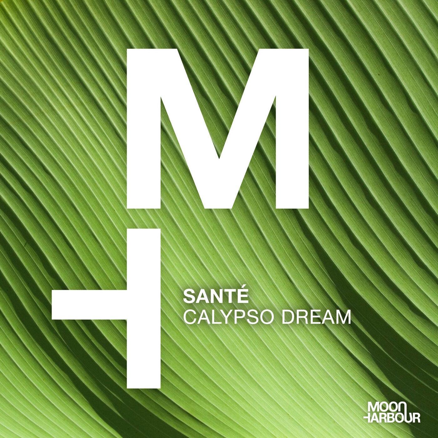 Calypso Dream (Original Mix)