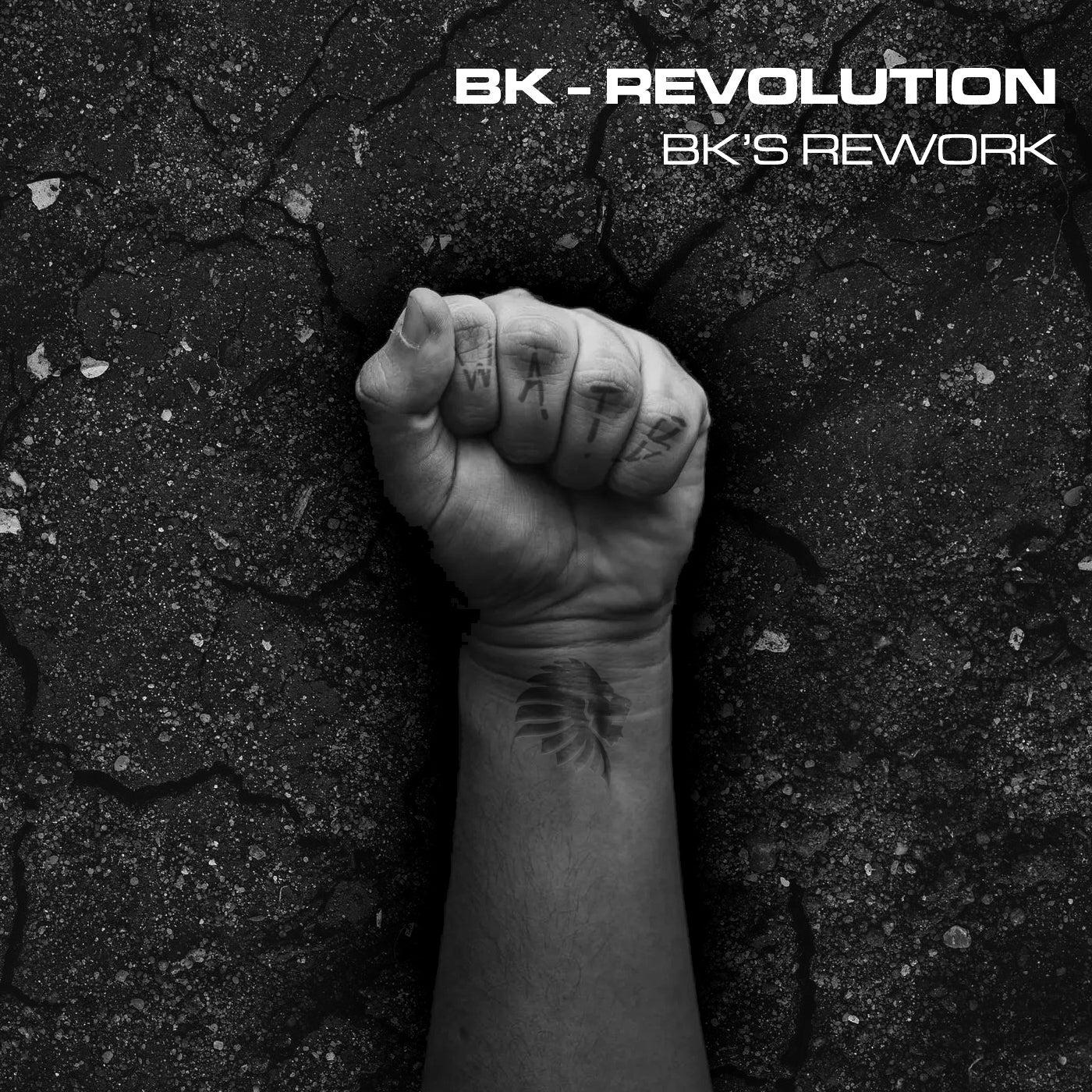 Revolution - BK's Rework (Original Mix)
