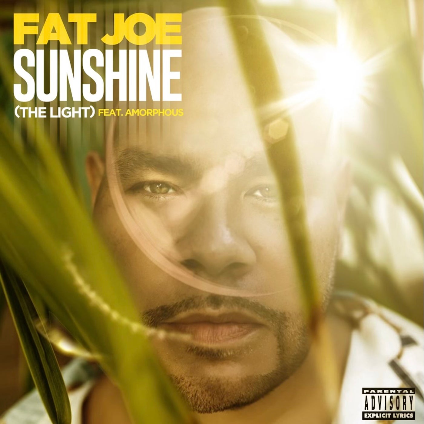 Sunshine (The Light)  (feat. Amorphous) (Original Mix)