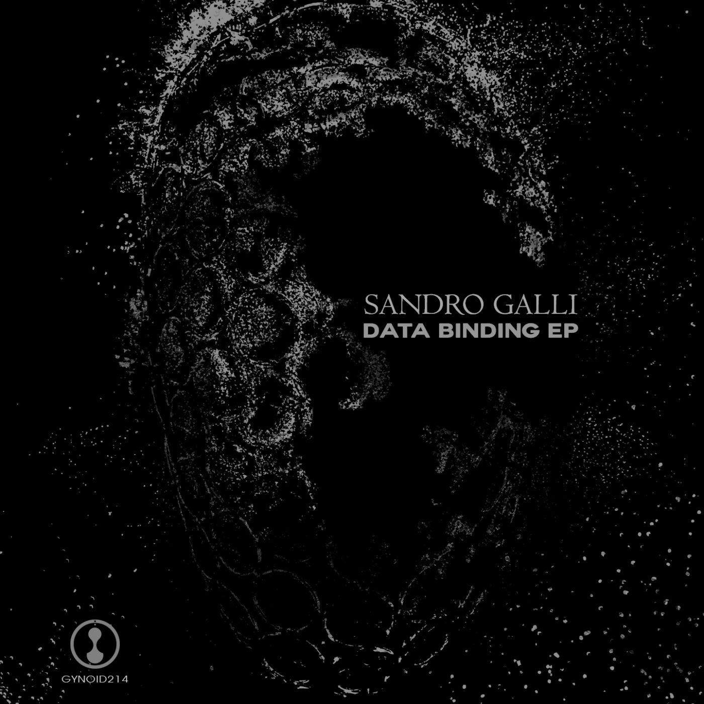Data Binding (Original Mix)