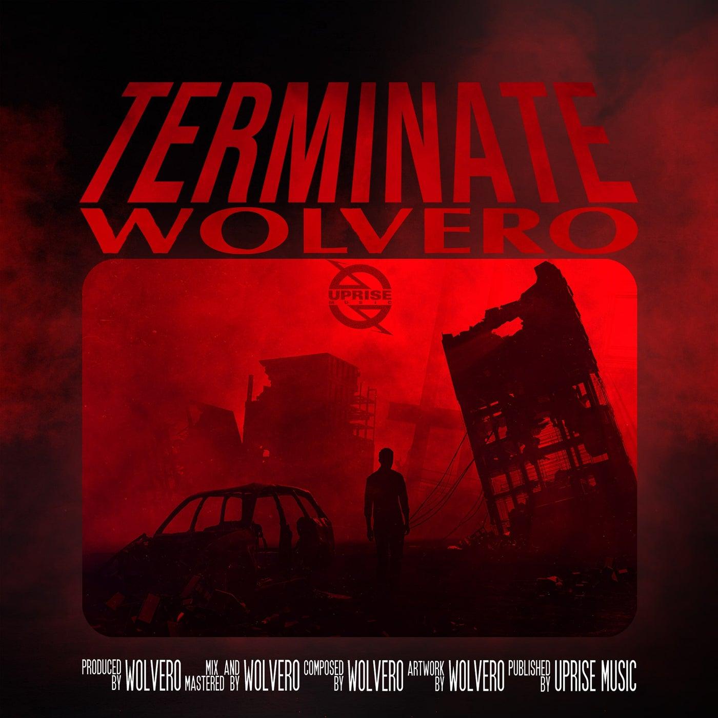 Terminate (Original Mix)