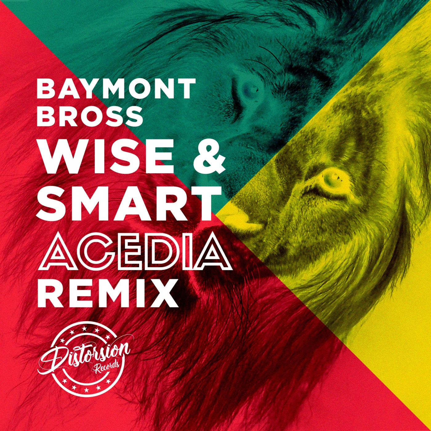 Wise And Smart (ACEDIA Remix)