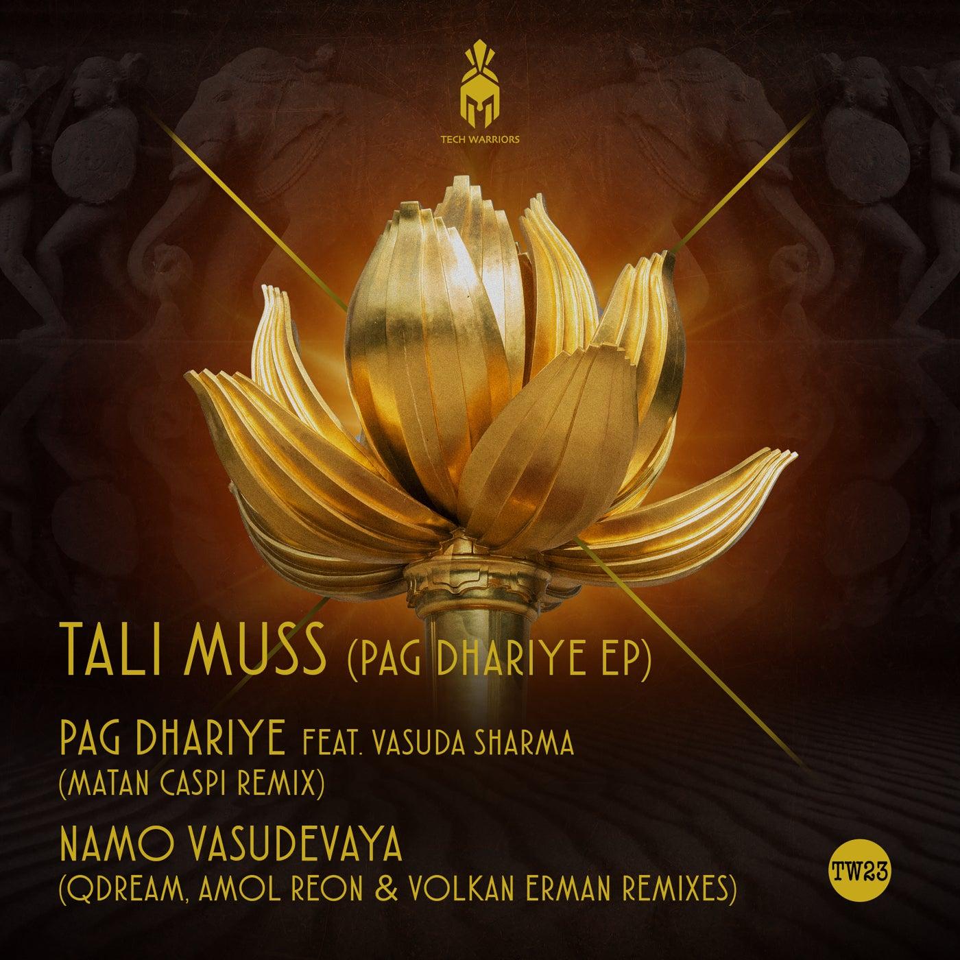 Om Namo Vasudevaya (QDream Remix)