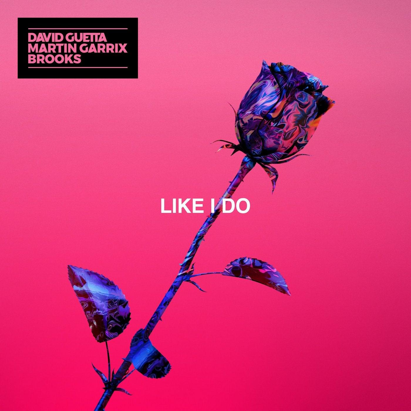 Like I Do (Extended)