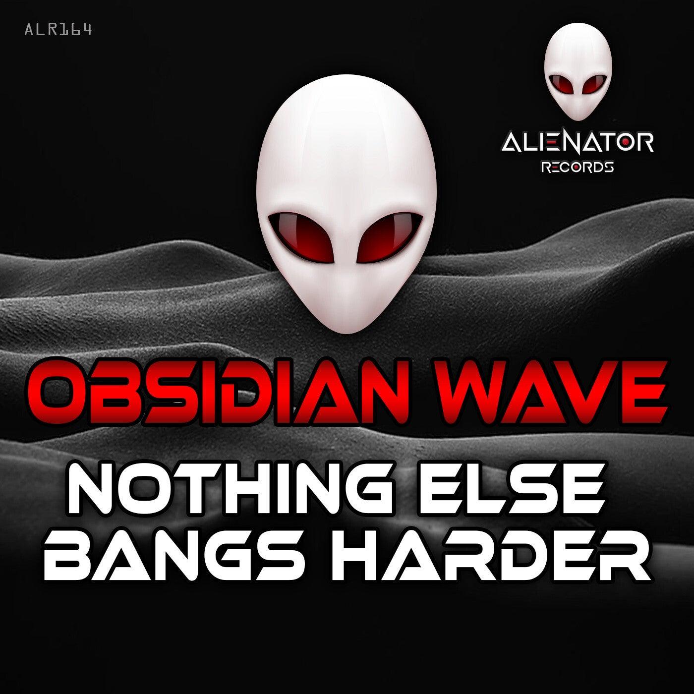 Nothing Else Bangs Harder (Original Mix)