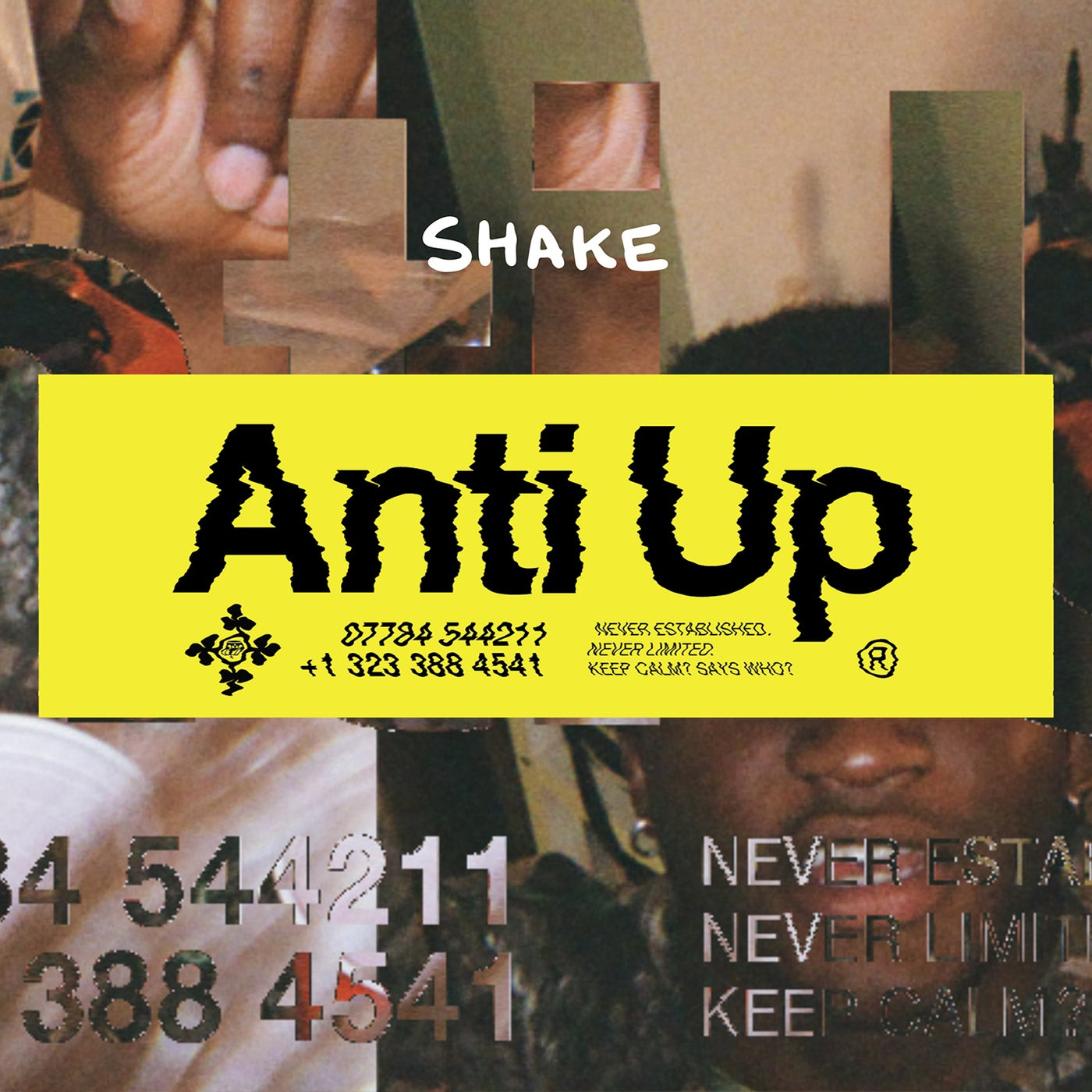 Shake (Extended Mix)