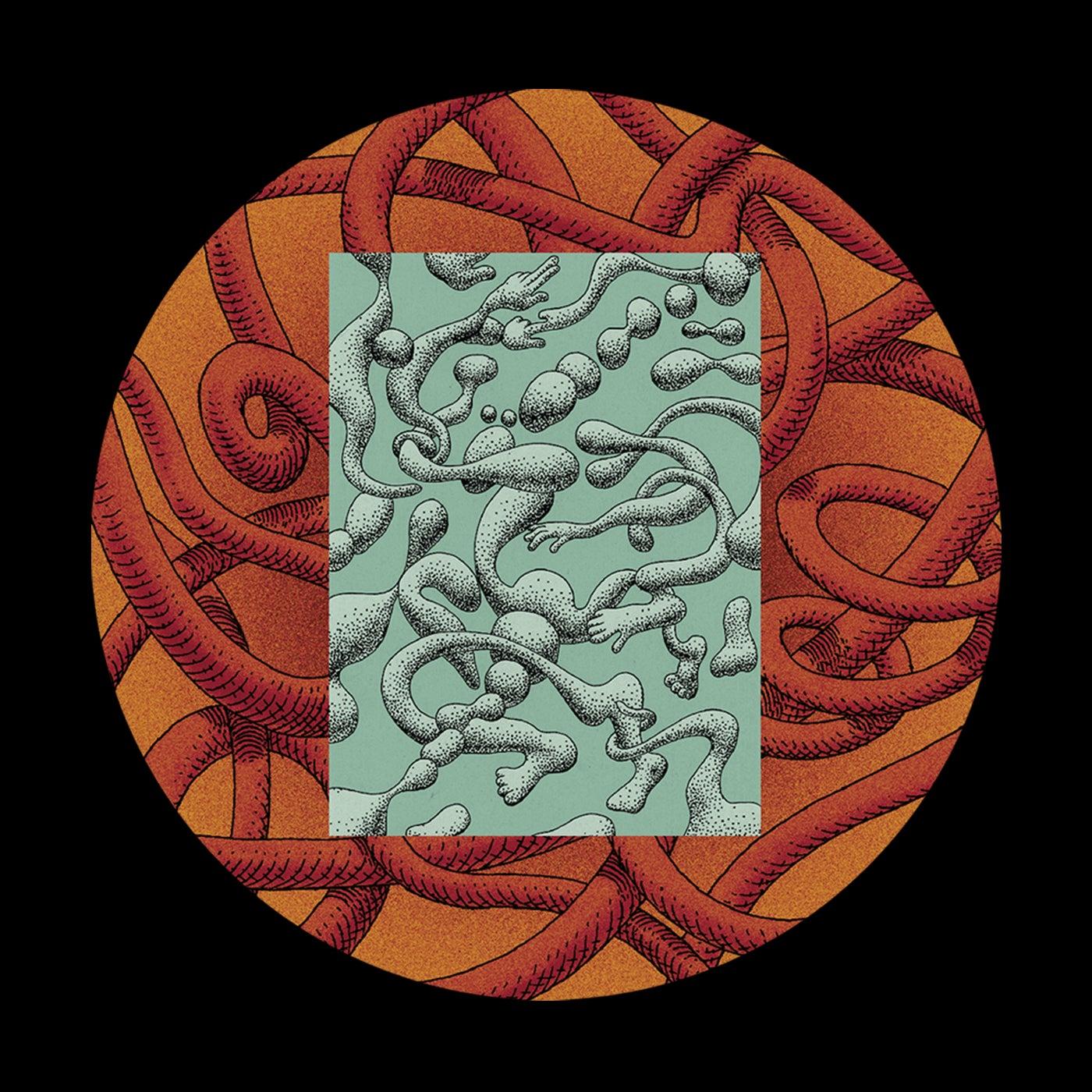 Clutch (Bakongo Remix)