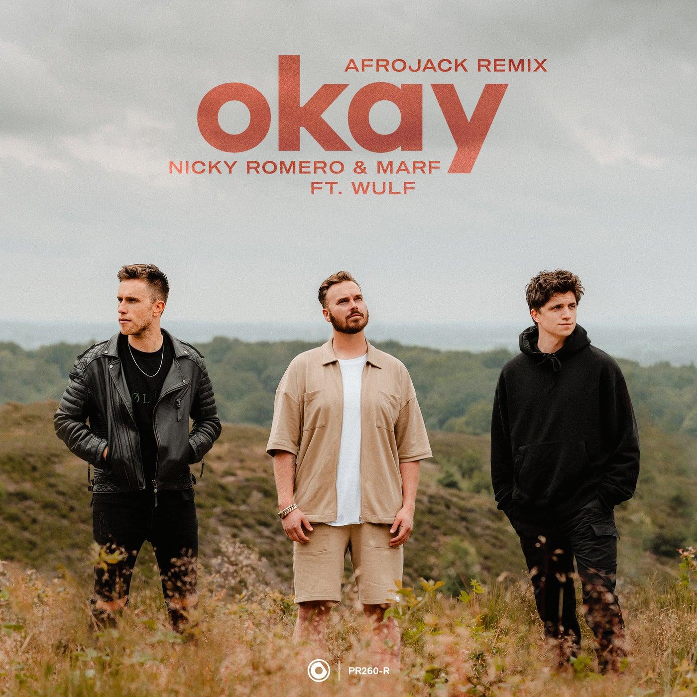 Okay feat. Wulf (Extended Afrojack Remix)